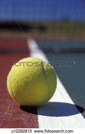Stock Photo of Tennis Ball Resting On The Out.