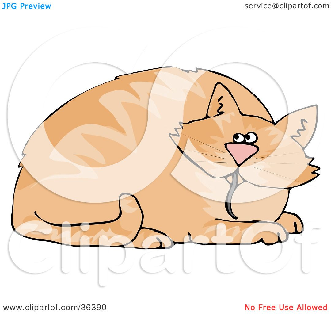 Clipart Illustration of a Chubby Orange Cat With A Mouse Tail.