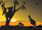 Vector Clipart of koala kangaroo.
