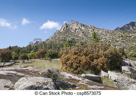 Stock Images of Mountain landscape at Sierra de la Cabrera, Madrid.