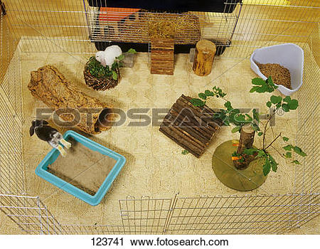 Stock Photography of rabbit outdoor enclosure.