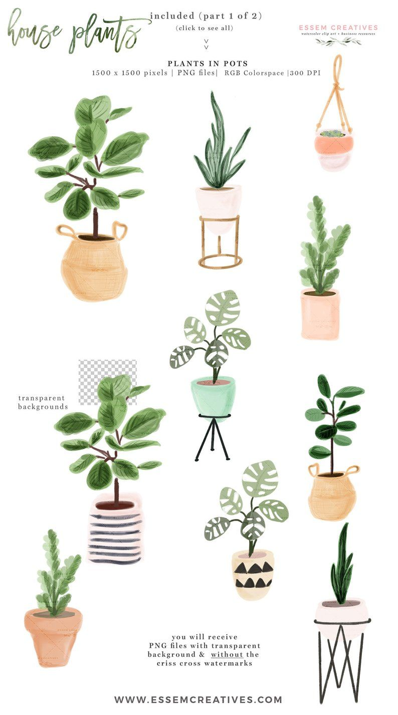 Watercolor House Plants Clip Art, Indoor Plants Potted Plant.