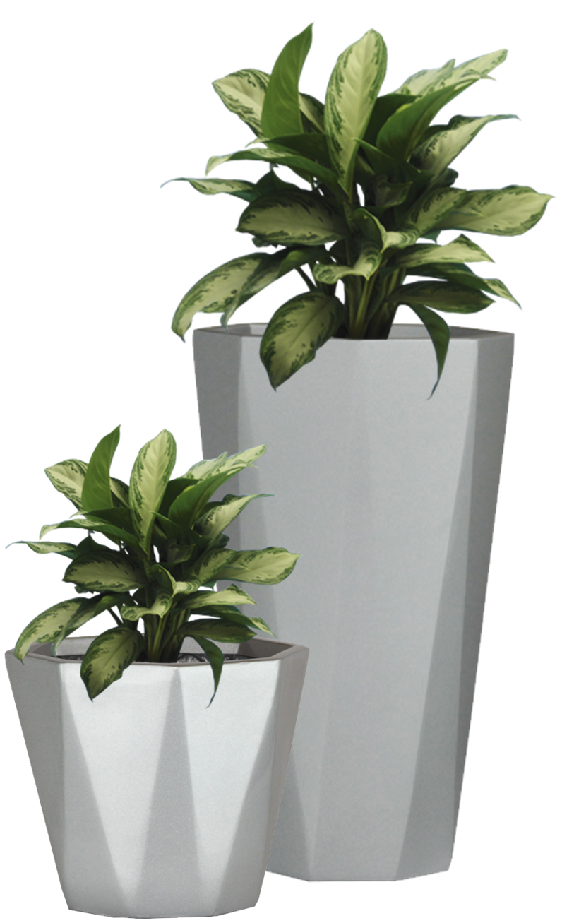 Potted plant png pictures #44927.