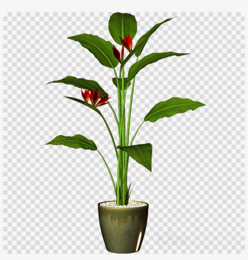 Plants Pots Png Clipart Houseplant Flowerpot Clip Art.