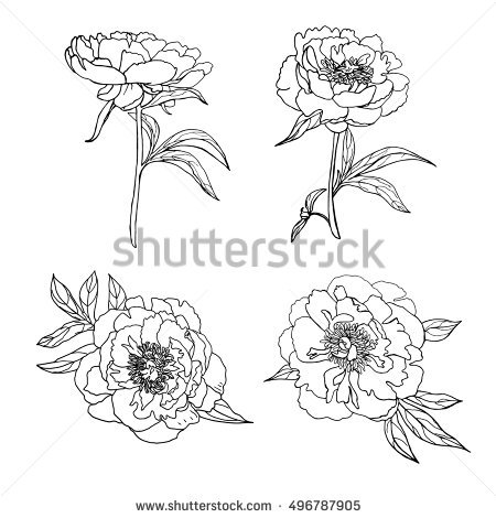 Flower Outline Stock Images, Royalty.