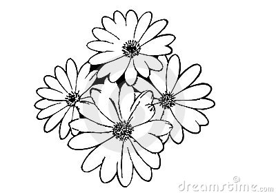 Outline Flowers Pictures.
