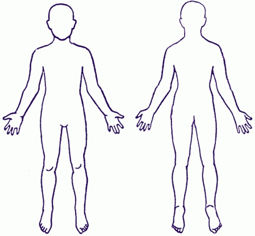 Clipart human body outline clipart human body outline human.