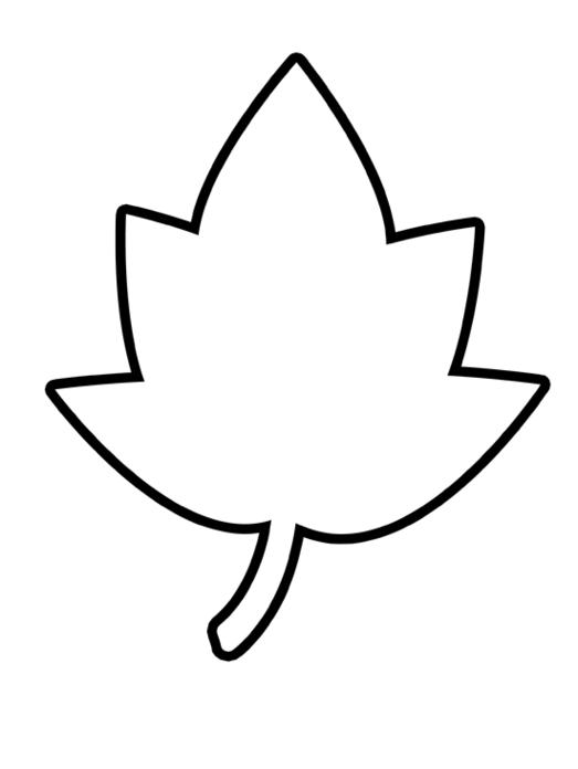 Leaf clipart outline 1 » Clipart Station.