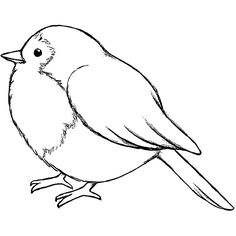 outline of birds clipart #6