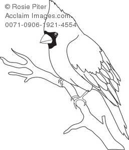 Clip Art Illustration Of The Outline Of A Bird.