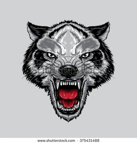 Wolf Face Stock Images, Royalty.