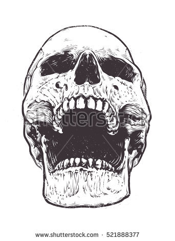 Open Skull Stock Images, Royalty.