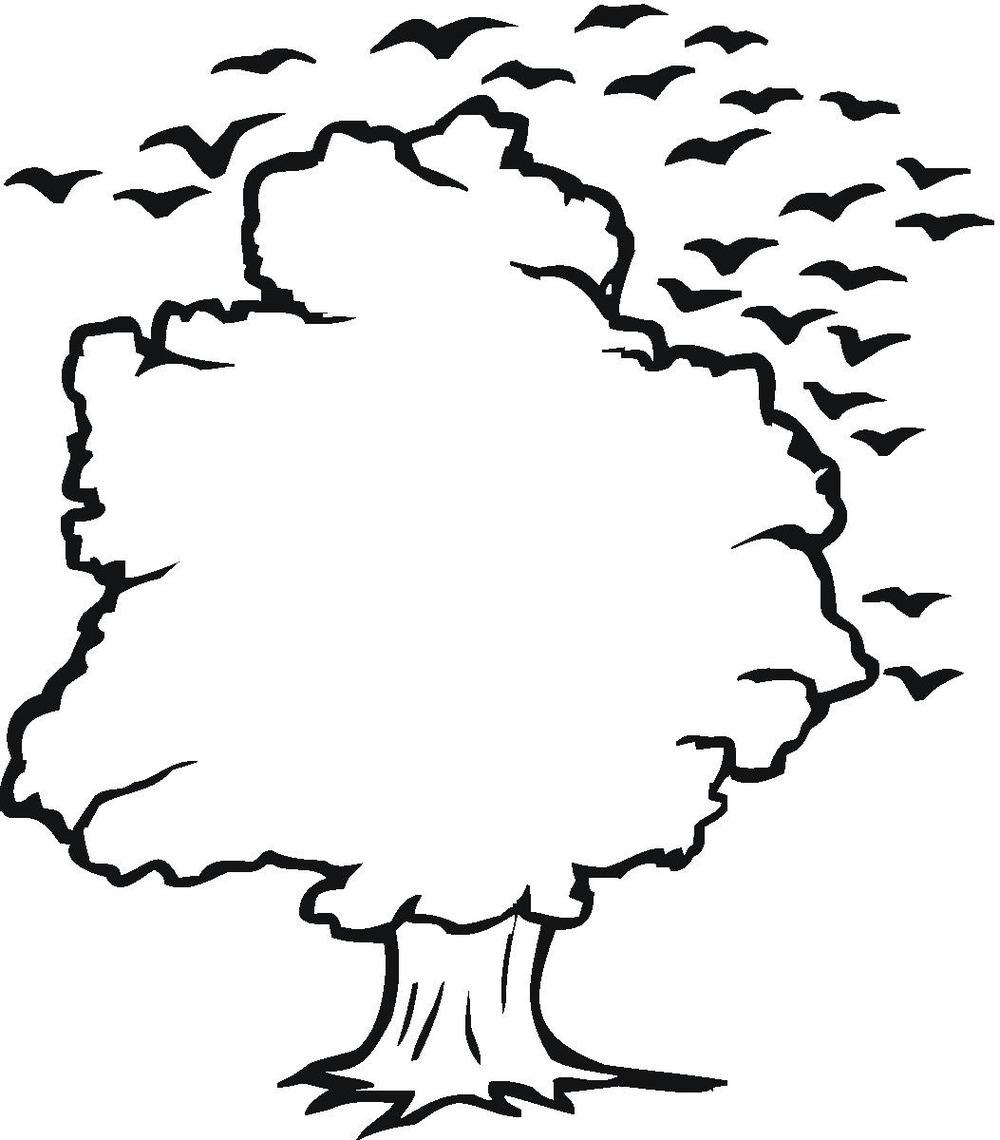Tree Outline Clip Art & Tree Outline Clip Art Clip Art Images.