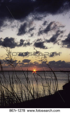 Pictures of Outer Banks, North Carolina, USA 867r.