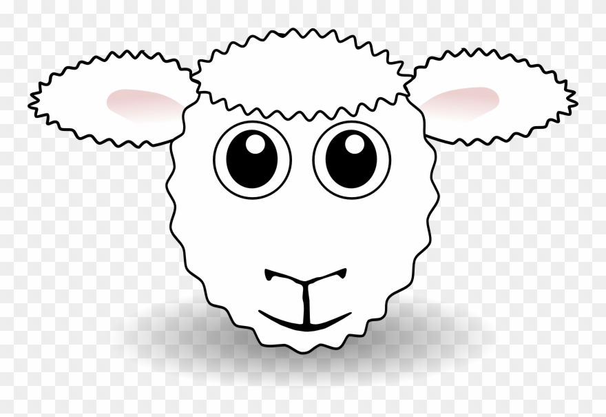 Sheep Head Drawing.