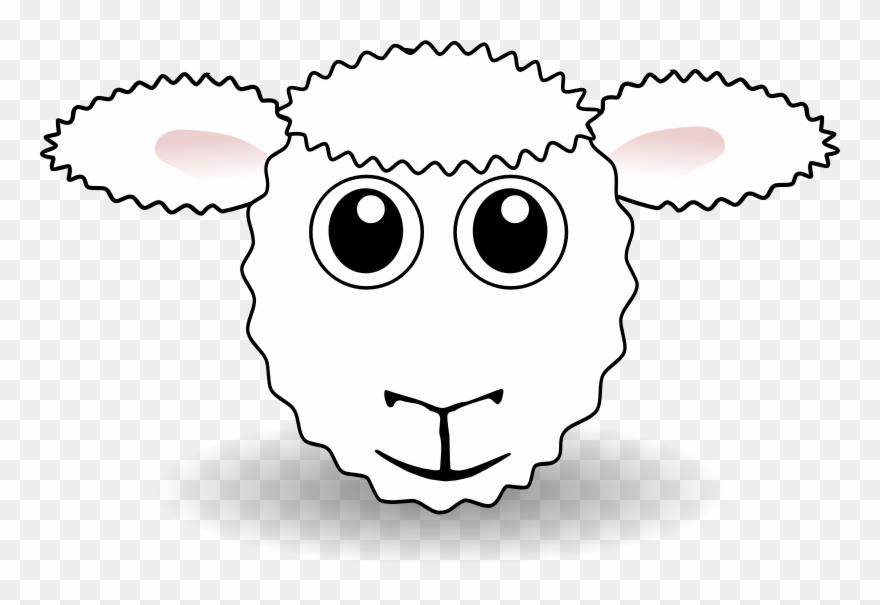 Sheep Head Drawing.