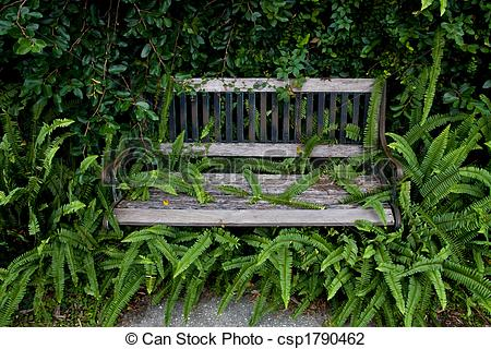 Stock Photo of Overgrown Park Bench.