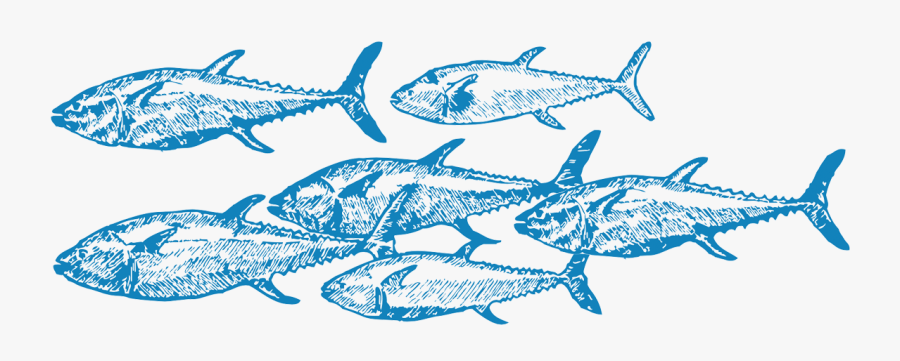 Challenges For Overfishing Include Monitoring Fishing.