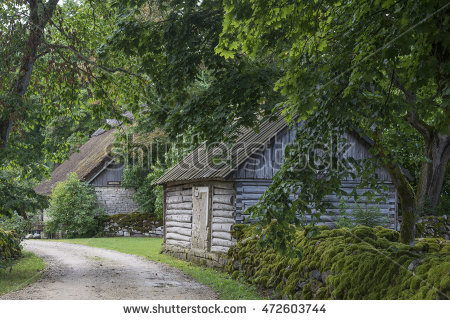 Old House Lush Green Woods Overgrown Stock Photo 55031047.
