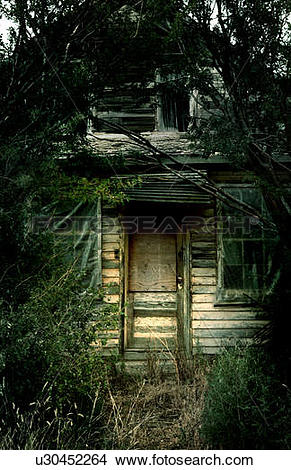 Stock Photo of Overgrown derelict house, Robsart, Saskatchwan.
