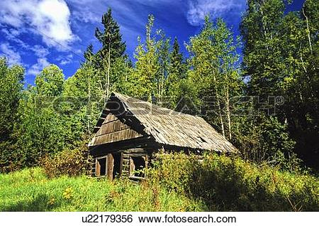 Stock Images of house home old pioneer trappers cabin overgrown.