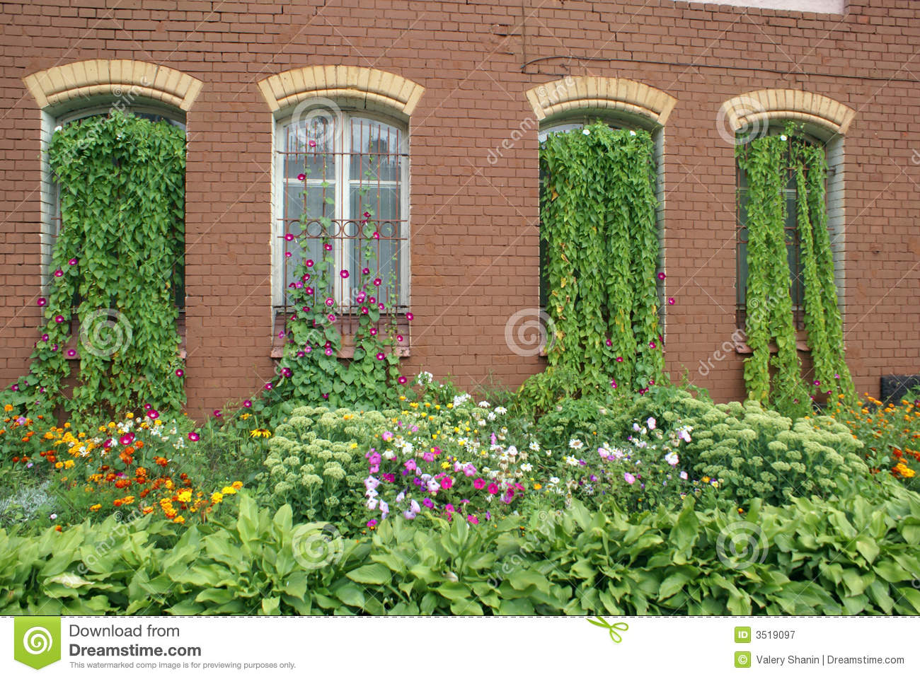 Overgrown House Windows Royalty Free Stock Photography.