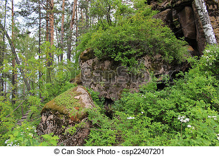 Stock Photography of Overgrown with moss and grass stones. Reserve.