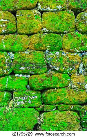 Stock Photograph of Texture of rock wall overgrown with moss.