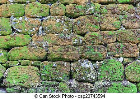 Stock Photographs of Old stone wall overgrown with moss.