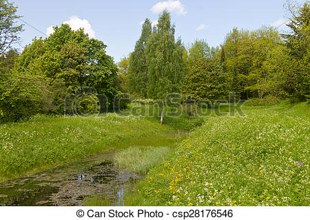 Stock Photo of overgrown forest pond on a sunny summer day.