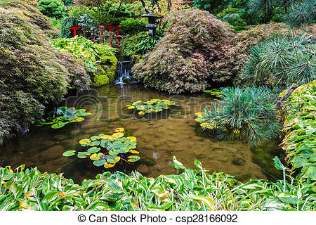 Stock Photographs of Small pond, overgrown with lilies.
