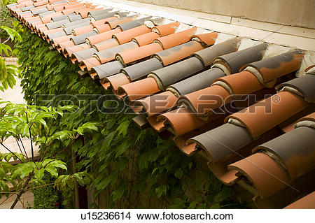 Stock Photo of Red tile overhang with ivy beneath u15236614.