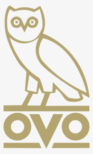 Ovo Owl PNG & Download Transparent Ovo Owl PNG Images for.