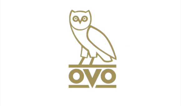 Ovo Owl Png Vector, Clipart, PSD.