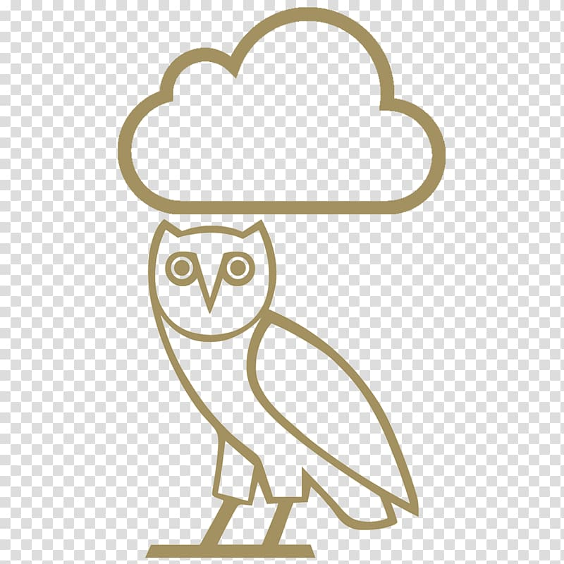 OVO Sound October\'s Very Own Logo Take Care , judo owl.
