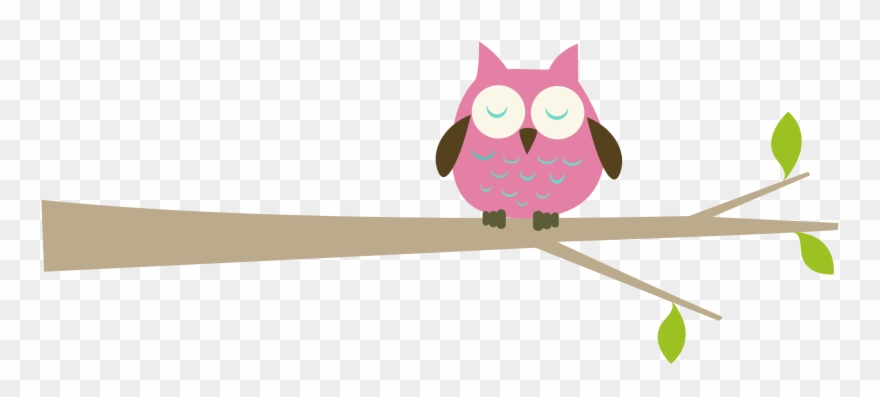 Pink Owl On Branch Images & Pictures.