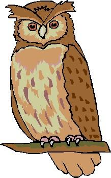 Owl Clipart Cute Free.