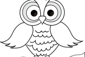 Cute owl clipart black and white 1 » Clipart Portal.
