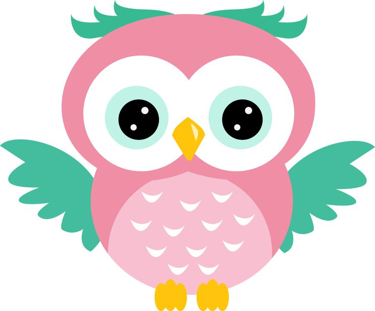 Spring Owl Clipart.