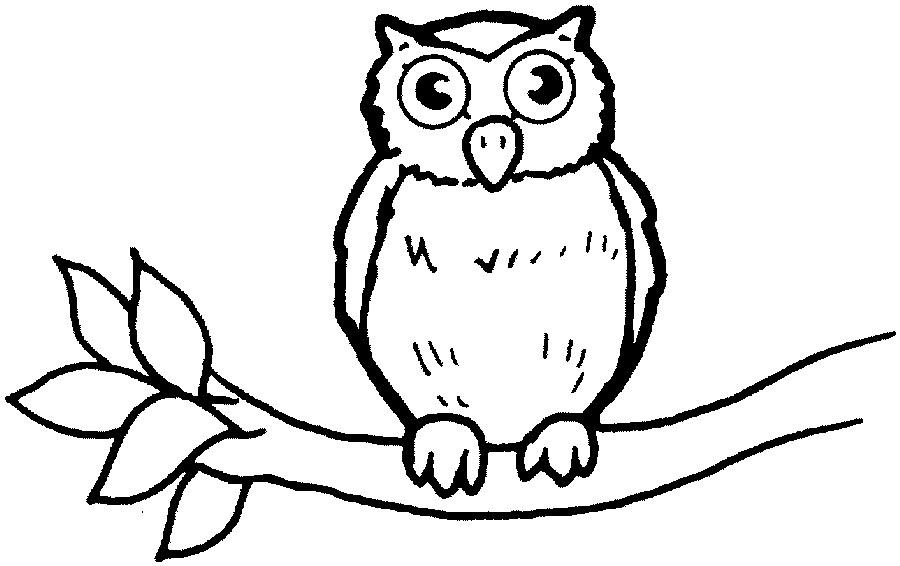 Owl clipart outline.