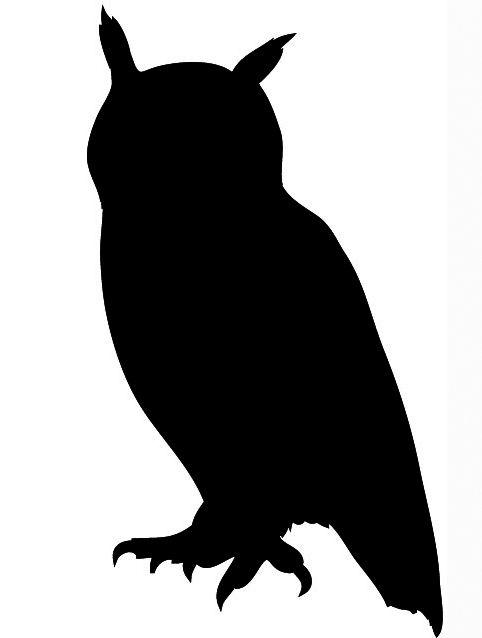 Flying Owl Silhouette.