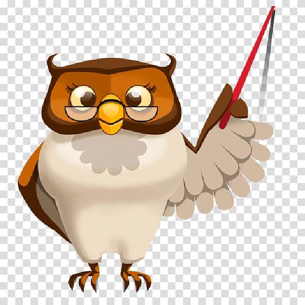 Owl Teacher Education School , owl cute transparent.