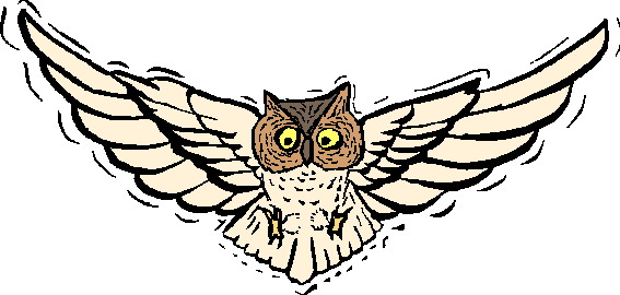 Flying owl clipart 2 » Clipart Station.