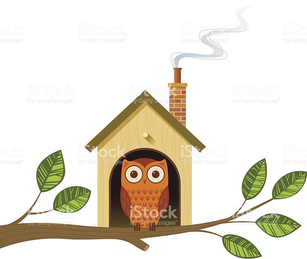 Cartoon Image Of An Owl In A Little House On A Tree Branch stock.