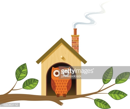 Cartoon Image Of An Owl In A Little House On A Tree Branch Vector.