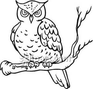 17+ Owl Clipart Black And White.