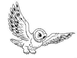 Image result for owl in flight drawing.