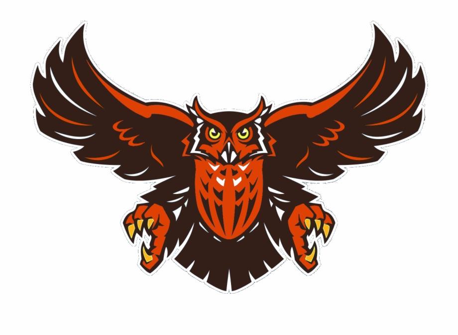 15 Owl Vector Png For Free Download On Mbtskoudsalg.
