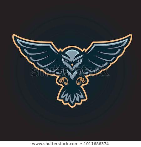 Flying owl logo mascot.