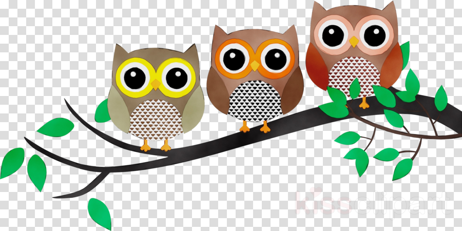 owl bird bird of prey branch clip art clipart.